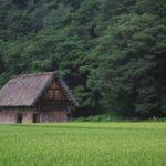 農業 farmingと agricultureはどう違うの?