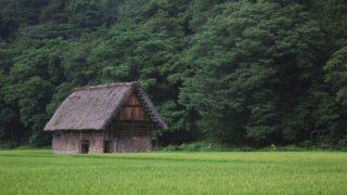 農業で使われる面積の単位「畝・反・町」とは?