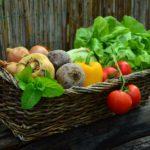 農業初心者におすすめ春から作れる実のなる野菜たち