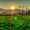 糸島で農業を学ぶ。糸島農業高校に進学するという選択