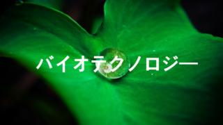 三菱総合研究所(MRI)がAIを使った家庭菜園を実証実験!