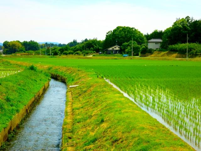 農作業に関する記事