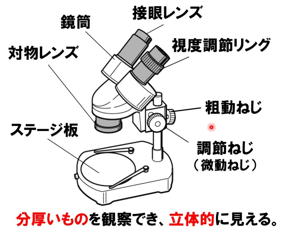 双眼実体顕微鏡