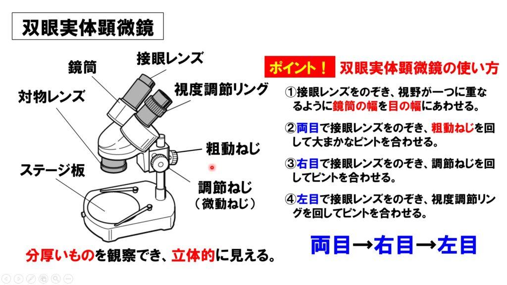 双眼実体顕微鏡の使い方