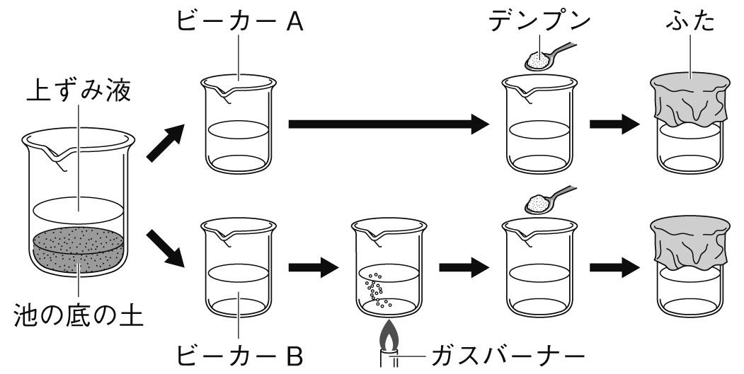 分解者のはたらき 対照実験