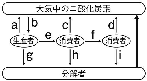 炭素の循環図