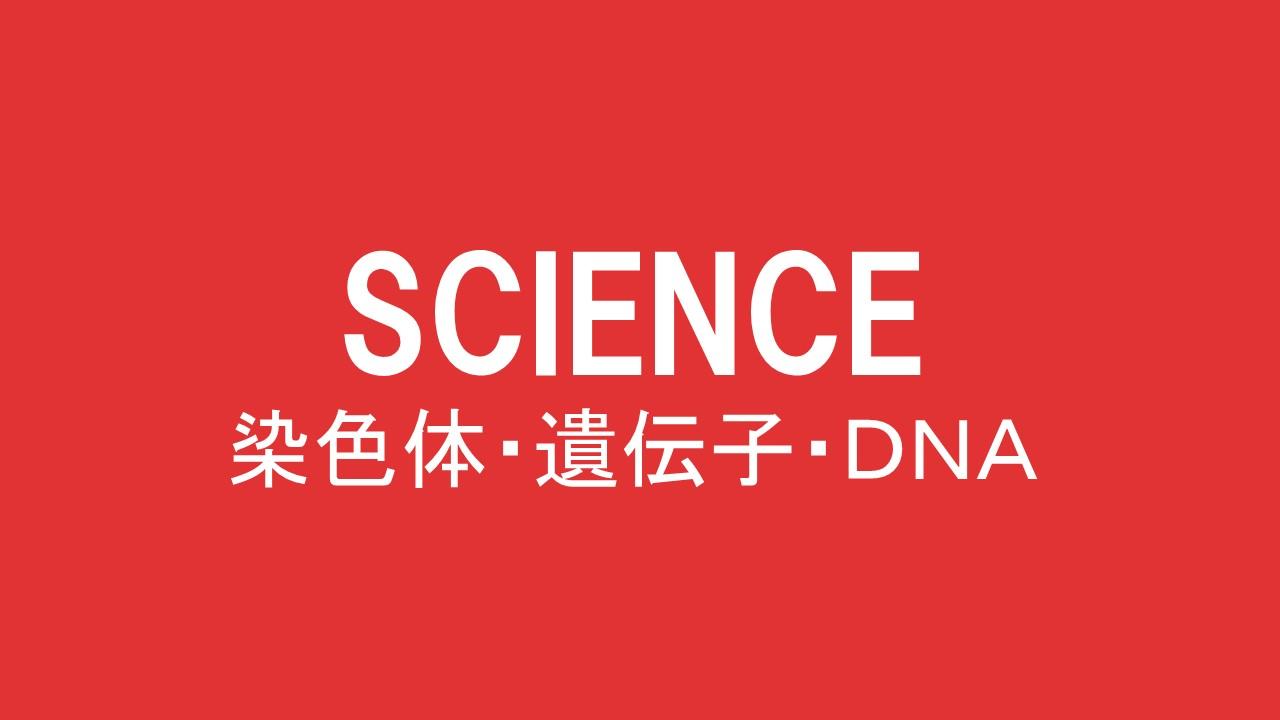 染色体・遺伝子・DNA