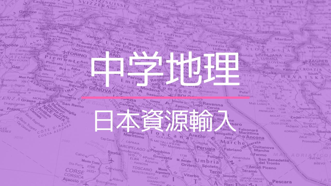 日本の輸入