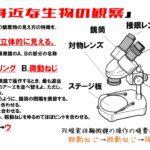 中1理科問題演習「身近な生物の観察」顕微鏡やルーペでの生物の観察